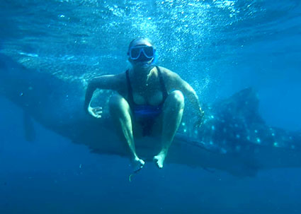 This image has an empty alt attribute; its file name is swimming-with-whale-sharks-1.jpg